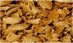 Almond Shells