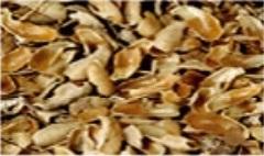 Castor Seed Shells
